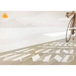 2013 Tour de France Stage 19